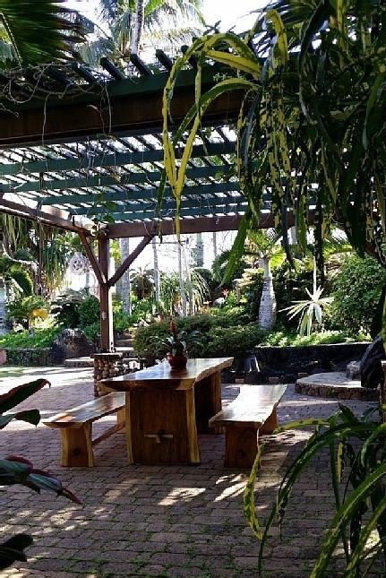 20-hawaiian-romantic-new_bbq2