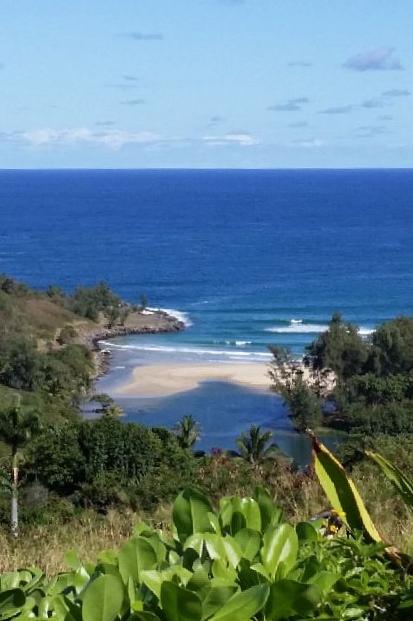 hawaiian-romantic-new_oceanview3