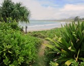 paradise-estate_path_img_2461