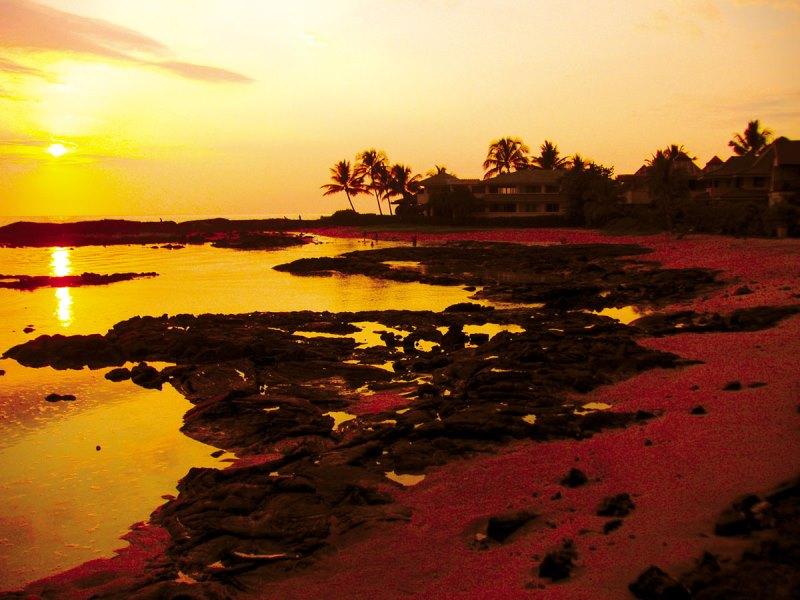 kona-coconut_cove-sunset