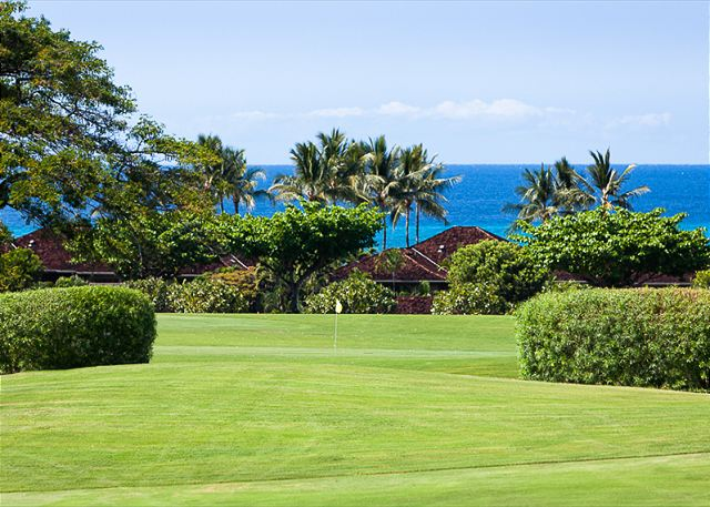 1-palm-villa-130a_golf-ocean-view
