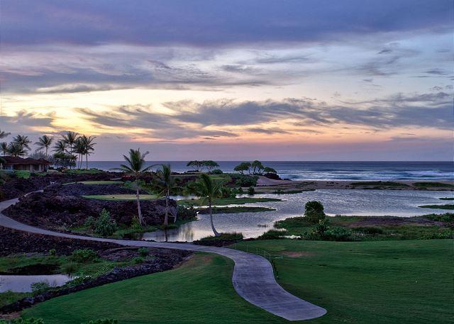 22-palm-villa-130a_ocean-view-fish-ponds