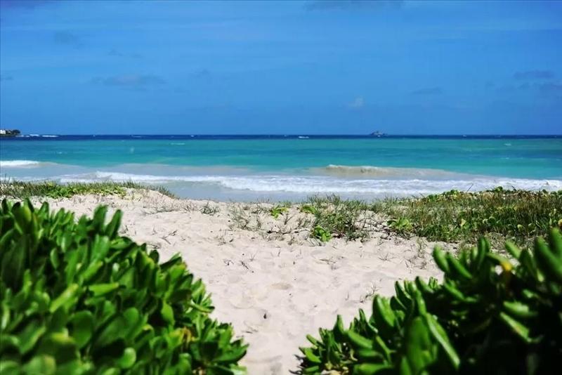 mahina-kai_beach-path-800x534