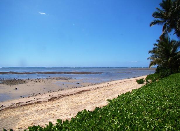 beach_lg