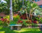 13-hawaiian-estate_day-garden1-800x534