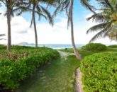 3-serenity-villa_path-to-beach-800x534