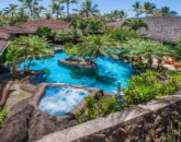1-luxury-oasis_pool-and-jacuzzi-above2-800x534