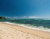 7-tropical-retreat_beach1-800x571