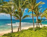 7-luana-beachfront_beach2