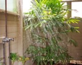 12-fairway-villa-110c_outdoor-shower