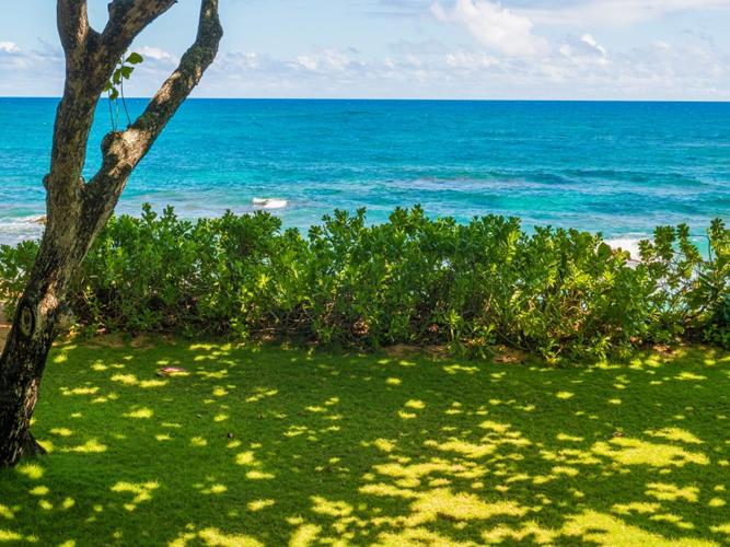 1019883_oceanfront-view_800x600