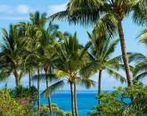hillside_oceanview