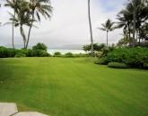paradise-estate_lawn_img_2407