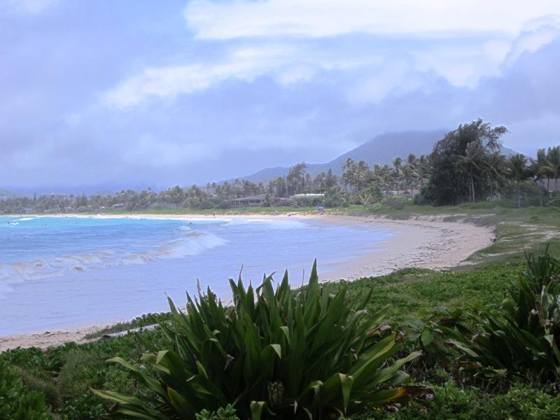 paradise-estate_beach_img_2460