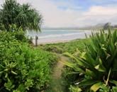 paradise-estate_path_img_2461