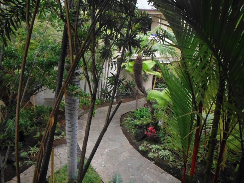 kona-coconut_grounds