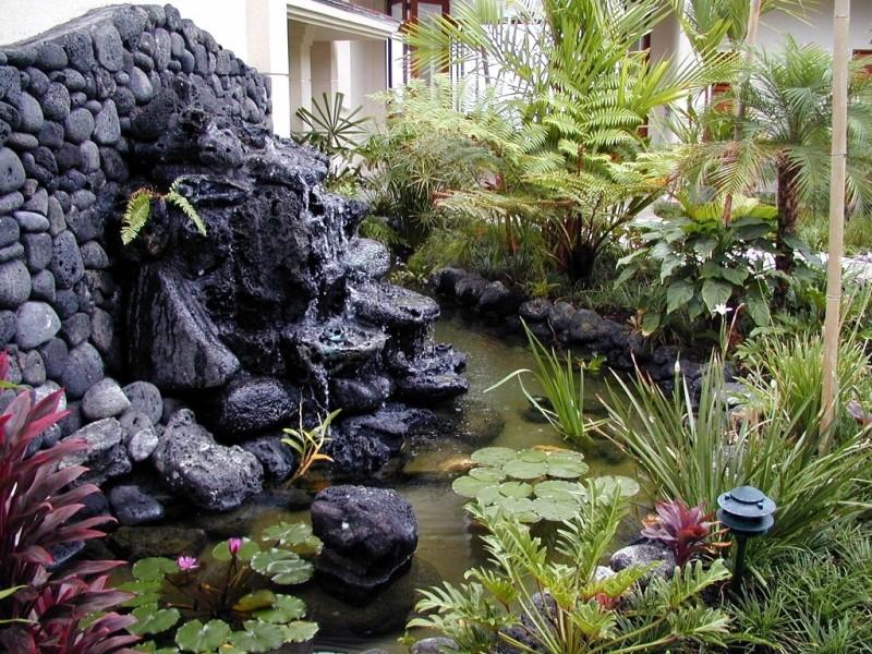 kona-coconut_pond