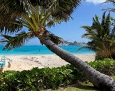 8-1-lanikai-ohana_palm-to-beach-800x532