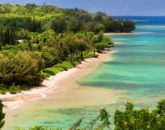 23-anini-beachfront_anini-beach3-800x533