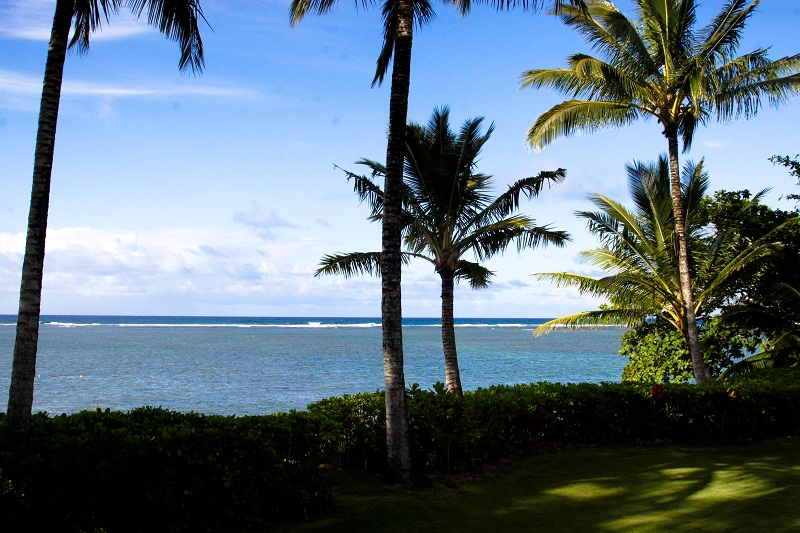 5-anini-beachfront_oceanview-800x533
