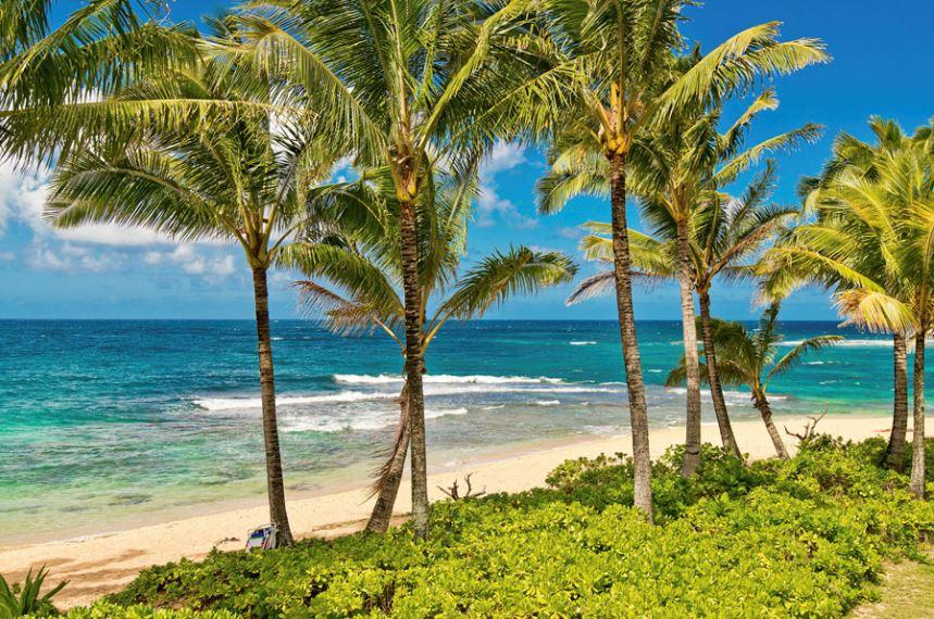 7-luana-beachfront_beach2-2