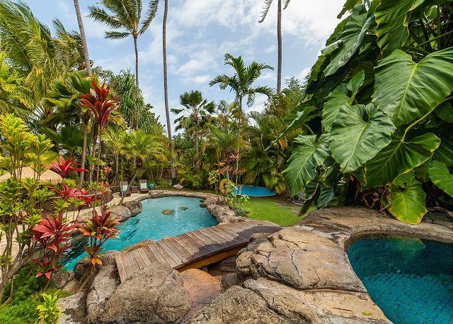 1 Kailua Tropical Oasis_pool1